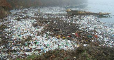 plaża zanieczyszczona plastikiem